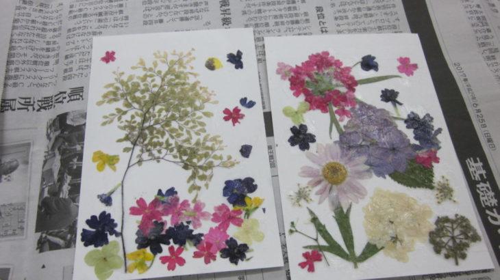 夏休み!子ども押し花教室